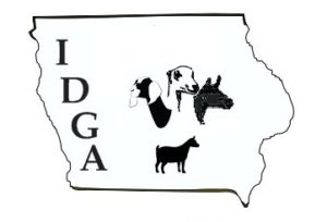 IDGA new logo