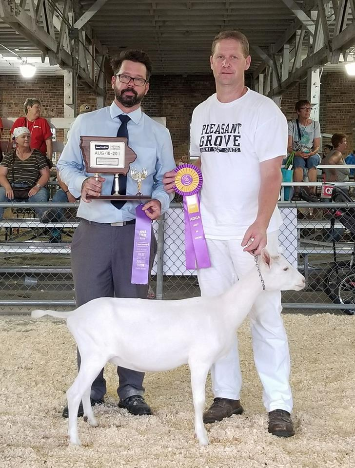 Junior Best Doe in Show BDIS , J-5 Farms Shimmer DC Finale, Craig Koopmann and Scott Bice