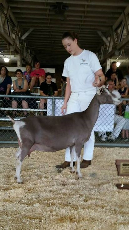 Best Udder Meadow Valley Declaration, Brittany and Justin Korver